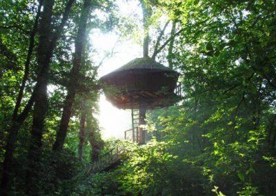 Cabane de l'Amazonie - Hébergement insolite dans la Vienne (86) - Nuit insolite dans une cabane dans les arbres