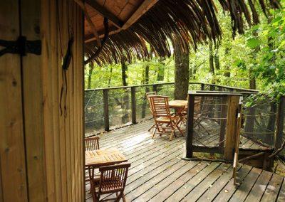 Cabane dans les arbres des Chimpanzés - Parc de la Belle - Hébergement insolite dans la Vienne (86) entre Paris et Bordeaux proche du parc du futuroscope